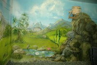 Художественные стены благодаря рисунку и матовой краске выглядят бархатистыми. Настенная роспись и пол почти не имеют между собой границ.